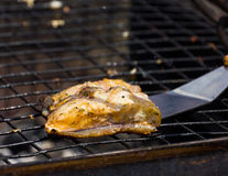 Grilled tench slice Stock Images