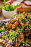 Grilled teriyaki chicken wings Stock Photos