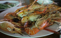 Grilled Thai Shrimp. One of delicious seafood which is served in Thailand Stock Image