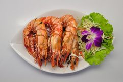 Grilled tiger prawns on white plate and white background stock image