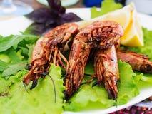 Grilled Tiger shrimps Stock Images