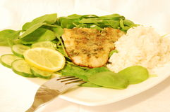 Grilled tilapia fish. With fresh spinach leaves, herbs, lemon, cucumber and rice royalty free stock photos