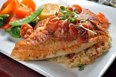 Grilled Tilapia fish. Served with fried rice veggies royalty free stock photo