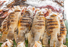 Grilled Tilapia fish Stock Photo