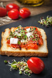 Grilled toasted bread Stock Images