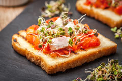 Grilled toasted bread Royalty Free Stock Image