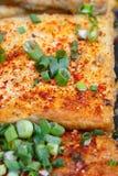 Grilled tofu Stock Image