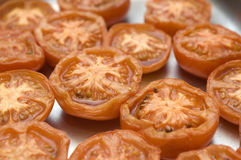 Grilled tomatoes Stock Image