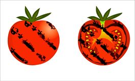 Grilled tomatoes vector. On white background for isolation stock illustration