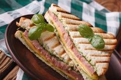 Grilled triangular ham sandwich close up horizontal Stock Photos