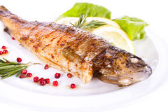Grilled trout. Fried body fish, lemon and berries. background Stock Photos
