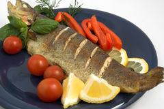 A grilled trout Royalty Free Stock Image