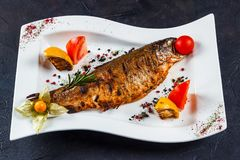 Grilled trout fish with lemon, frisalis and tomato on a white plate royalty free stock photos