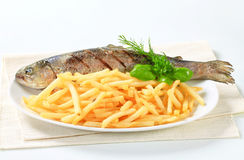 Grilled trout with French fries Royalty Free Stock Photography