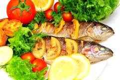 Grilled trout with fresh herbs Royalty Free Stock Photos