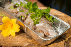 Grilled trout Stock Photos