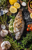 Grilled trout with herbs Stock Photos