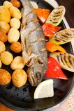 Grilled Trout .japanese cuisine Stock Photography