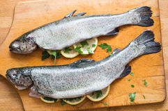 Grilled trout with lemon, dill and butter, selective focus Stock Photo