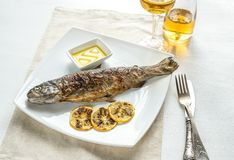 Grilled trout with lemon Stock Photo