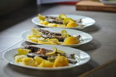 Grilled trout with lime and potato Royalty Free Stock Photo