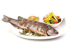 Grilled trout with lime and salad.  stock images