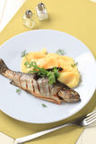 Grilled trout and mashed potato Stock Photography