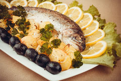 Grilled trout with olive, potato and vegetables Stock Images