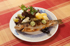 Grilled trout on a plate with garnish, still life royalty free stock image