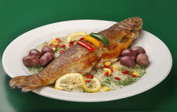 Grilled trout. On plate with spices and olives Stock Images