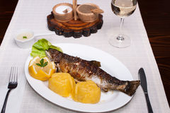 Grilled trout with polenta, lemon, garlic sauce Stock Photography