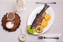Grilled trout with polenta, lemon, garlic sauce Royalty Free Stock Photography