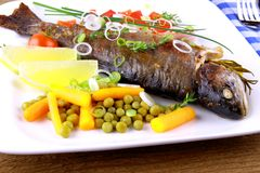 Grilled trout with quite fine vegetables and cutlery Stock Photos