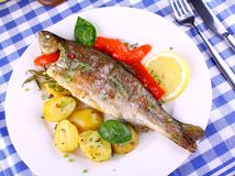 Grilled trout with red pepper, rosemary and potato Royalty Free Stock Image