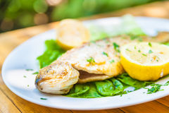 Grilled trout served on a plate Stock Photo