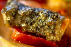 Grilled a trout on a tomato. Fried golden a skin of fish. Art photography. stock photos
