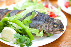 Grilled trout on white dish Stock Photo