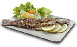 Grilled trout on white dish decorated with lemons. Grilled trout on white plate decorated with lemon, herbs and garnish Stock Photo