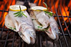Grilled trouts Royalty Free Stock Photos