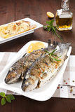 Grilled trouts. Seafood concept. Two grilled trouts on white plate with lemon pieces, potatoes and olive oil on kitchen towel on wooden table Royalty Free Stock Photos