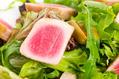 Grilled tuna fillet on fresh salad mix. Royalty Free Stock Photos