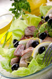 Grilled tuna salad Royalty Free Stock Photo