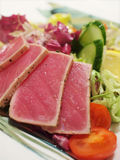 Grilled tuna salad Stock Images