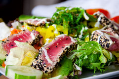 Grilled tuna salad Royalty Free Stock Photography
