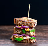 Grilled Tuna Sandwich  with onion, olives and pomegranate seeds. Grilled Tuna Sandwich  with onion, olives and pomegranate seeds Stock Image