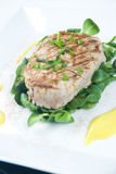Grilled tuna steak Royalty Free Stock Photography