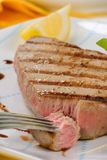 Grilled tuna steak. Closeup of juicy delicious Citrus-peppercorn-spiked grilled tuna steak with grilled vegetables. Shallow DOF Royalty Free Stock Photos