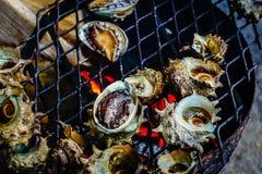 Grilled turban shells in seafood shop near Seopjikoji Stock Image