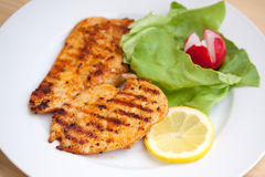 Grilled turkey  breast. close up Royalty Free Stock Photography