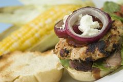 Grilled Turkey Burgers. Grilled Bacon Turkey Burgers topped with goat cheese, red onion, and barbecue sauce. Photographed with a Canon 5D for optimum image Stock Photos